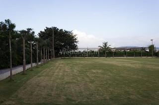 Jarande Lawns