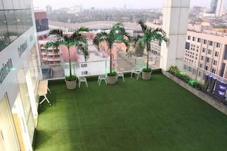 Wegrow Rooftop Garden