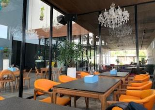 Toy Beach Club | Corporate Party Venues in Candolim, Goa